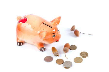 Piggy bank in the shape of a pig symbol of 2019 on a white background close-up. Nearby are round coins and acorns. Standard-Bild