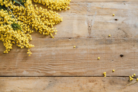 Spring Etude. The branch of the yellow mimosa lies on wooden boards Imagens