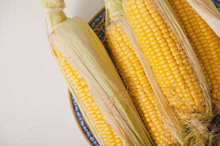 Beautiful cobs of ripe yellow corn with green leaves lie on a round plate on a white background