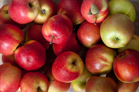 Still life with apples. A group of beautiful ripe apples lie evenly close up