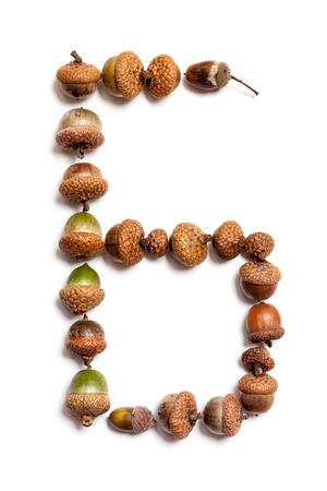 Oak letters. The letter B is composed of acorns on a white background.