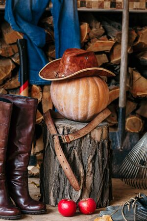 Autumn still life. On the stump is large ripe pumpkin on a background of chopped firewood.