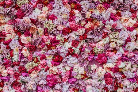 Floral abstract background. Beautiful rose buds of various colors and sizes are densely composed in a continuous layer 免版税图像