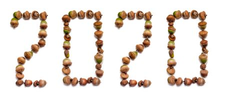2020. The number of the year is made up of numbers with a unique design of oak acorns on a white background.