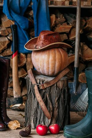 Autumn mood. On the stump is large ripe pumpkin on a background of chopped firewood. It leather hat and belt, close to the ax, shovel, rake, women, men boots and red apples Stockfoto