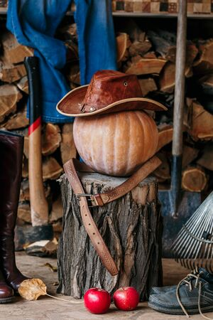 Autumn still life. On the stump is large ripe pumpkin on a background of chopped firewood. It leather hat and belt, close to the ax, shovel, rake, women boots, men shoes red apples Stockfoto