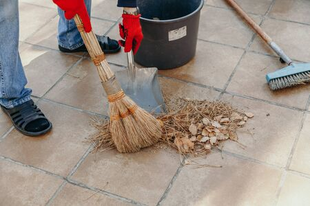 We remove the fallen needles of pine. Hands remove dried pine needles with a broom and metal spatula from a ceramic tile. 写真素材