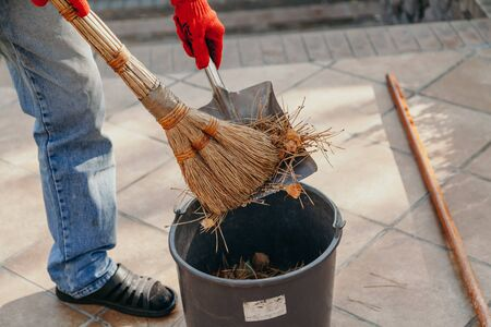 We remove the fallen needles of pine. Hands remove the dry needles of pine and leaves in a bucket with a broom and metal shovel