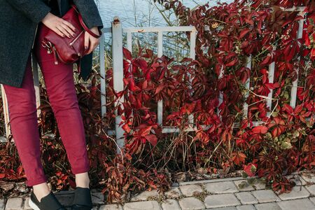 Autumn sketch in red tones. A girl in red pants with a bag is standing in front of a fence with twisted bushes with red leaves