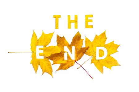 End. Letter carved on a beautiful yellow maple leaf on a white background close-up