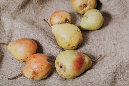 Still life with pears. Group of ripe pears lie on burlap closeup Stok Fotoğraf