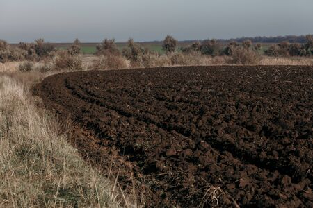 Agricultural landscape. The rounded edge of the plowed field of chernozem. Mowed grass grows on the border