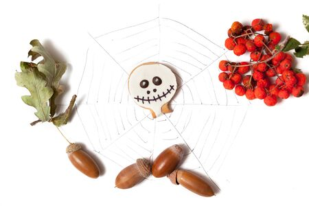 Autumn still life with Halloen. Round cookies in the form of a mask for Halloween, acorns and a branch of a mountain ash lie on a white background. Near the black web