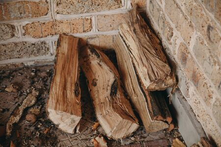 Four dry logs of acacia tree lie in the corner of a brick wall. Around lies trash