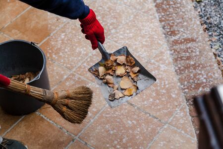 We remove the last leaves of autumn. The left hand holds a metal spatula with fallen birch leaves. The first snow lies on the tile