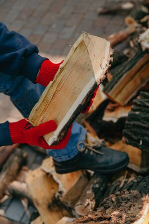 Hands in red work gloves hold a mulberry tree log with a yellow core and white stripes on a background of a pile of firewood