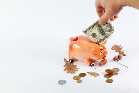 hand is laying a banknote into a piggy bank in the shape of a pig in the symbol of 2019 on a white background close-up. Nearby are coins, acorns and leaves.