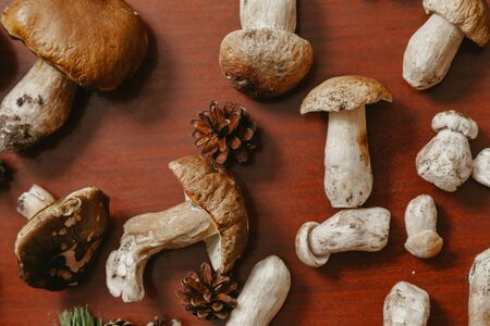 Forest still life. Porcini mushrooms of different sizes and pine branches lie on a brown table. View from above