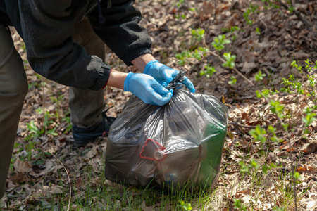 Cleaning nature from garbage. Environmentalist in blue rubber gloves ties a black plastic bag with trash in the forest Reklamní fotografie - 156564532