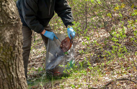 We save nature from garbage. Ecologist in blue rubber gloves collects trash in a black plastic bag in the forest