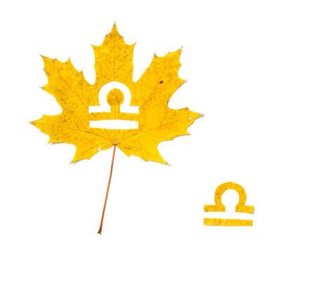 Zodiac on maple leaves. Libra zodiac sign symbol cut from yellow leaf of maple on white background Reklamní fotografie - 156783778