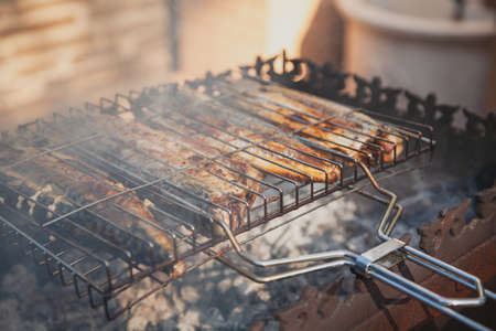 Grilled fish. Four mackerel with a steel grill prepared over white coals in the grill
