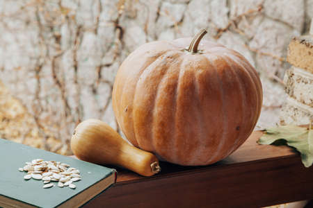 Pumpkin, book and seeds. Two pumpkins of different shapes and an old book lie on the railing of the veranda. White seeds lie on top