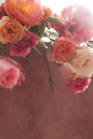 Bouquet of eustoma flowers on a delicate pink background in backlight and gentle haze Imagens