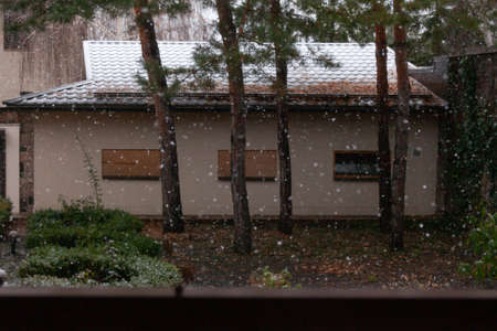 first snow began. White snowflakes fall on green bushes in the autumn park. A white layer of snow lies on the roof of the garage. Zdjęcie Seryjne