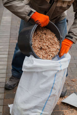 Man pours wooden sawdust from a bucket into a plastic bag in the yard Reklamní fotografie