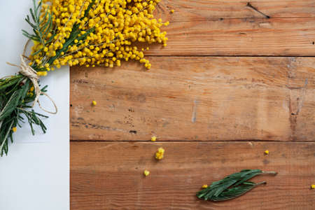 Spring still life. A branch of yellow mimosa lies on wooden boards. Nearby lies a sheet of white paper