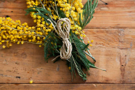 Spring etude. A branch of yellow mimosa lies on wooden boards. On top is a rope in the shape of the number 8