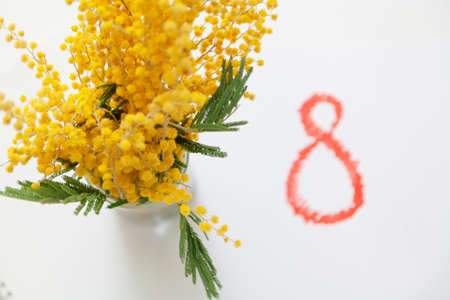 Eighth of March is a women holiday. Branch of yellow mimosa on a white background. Next to it is the drawn number 8 in red. View from above