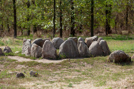 Magic stones in nature. A group of natural stones laid out in a circle are set vertically on the ground. Green trees in the background