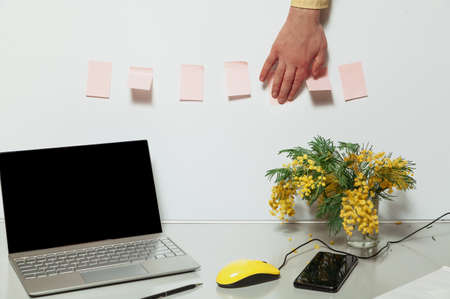 Spring mood in the office. There is an open laptop and a bouquet of yellow mimosa on a gray work table. Between them lies a mobile phone and a yellow computer mouse. Hand gluing a sticker Reklamní fotografie