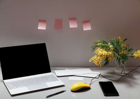 Spring in the office. There is an open laptop and a bouquet of yellow mimosa on a gray work table. Between them a mobile phone and a yellow computer mouse. There is a row of pink stickers on the wall