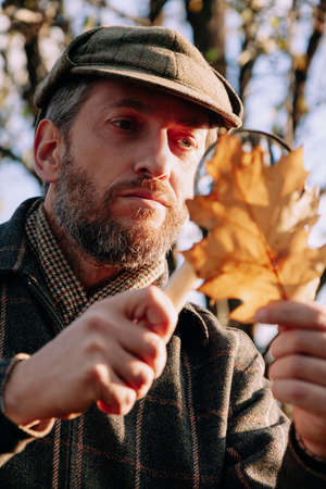 botanist with a beard examines a large yellow oak leaf through a large magnifying glass on a bone handle