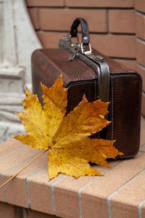 Autumn in vintage style. Vintage leather bag stands on a brick fence. On top lies a large yellow leaf of maple.