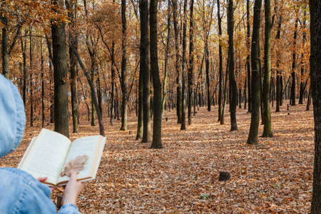 Mysterious autumn reading. A woman in a jacket with a hood reads a book against the background of trees. Brown leaves are lying on the ground. Instead of a bookmark, oak foxes are used in the book. Standard-Bild