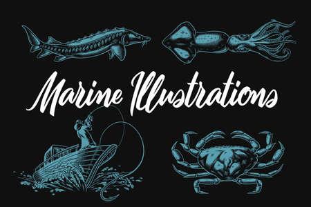 Ensemble d'illustrations marines vectorielles avec esturgeon, calmar, crabe et bateau de pêche