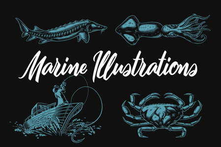 Set of vector marine illustrations with sturgeon, squid, crab and fishing boat