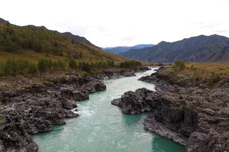 Mountain river turquoise. Rocky shores on both sides. Narrow channel. Altai. Russia.