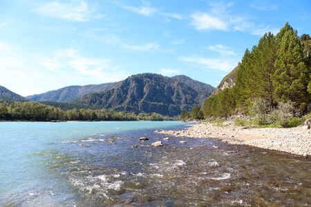 The confluence of a turquoise mountain river with a clear stream. Altai. Russia.