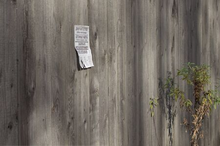 A paper ad with loose leaves is glued to a wooden fence in the countryside. Stok Fotoğraf