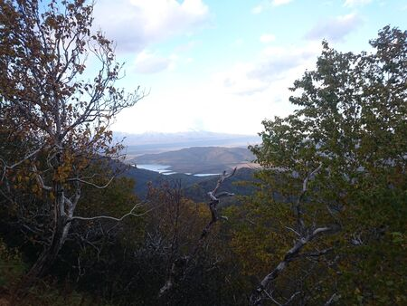 The lake in the distance. View through the branches of trees. Autumn. Kamchatka. Russia. Stock fotó
