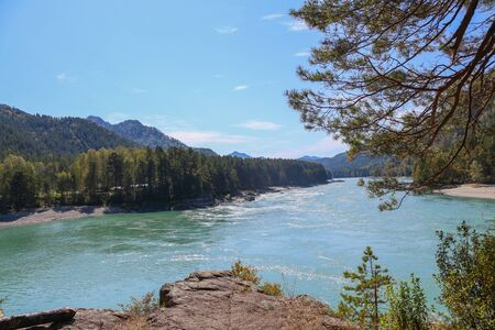 Mountain turquoise river. Beautiful view from the cliff. Katun River. Altai. Russia.