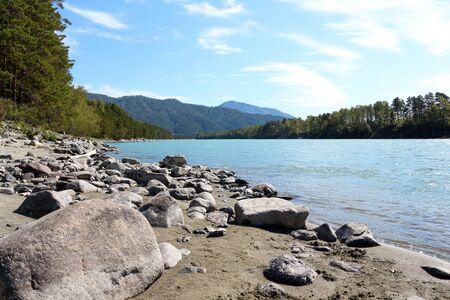 Mountain river turquoise. Coastline. Green tree. Big rocks on the shore. Altai. Russia. Stok Fotoğraf
