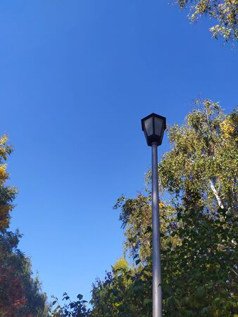 Street lamp on the background of green trees and blue sky.