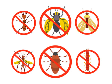pest: Pest Set Control. Set harmful , beetles , insects Vector illustration