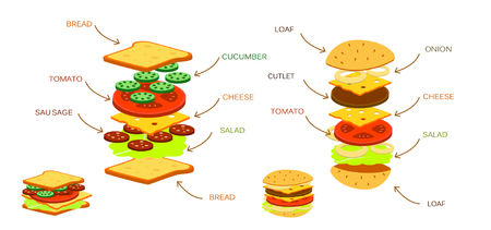 cucumber salad: Hamburger ingredients with meat cheese tomato salad bun cucumber infographic vector illustration